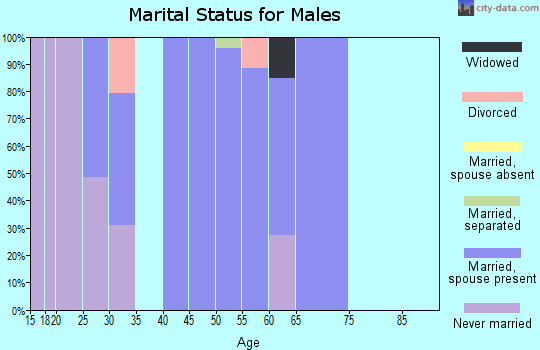 Zip code 25442 marital status for males