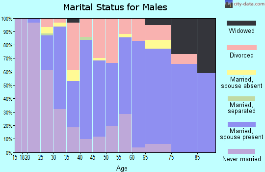 Zip code 25504 marital status for males