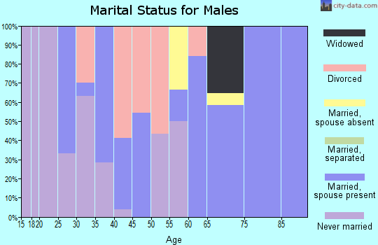 Zip code 25507 marital status for males