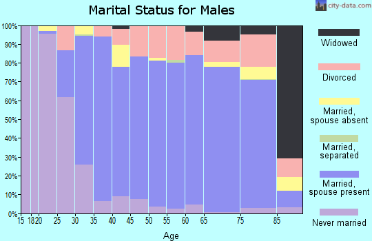 Zip code 25526 marital status for males