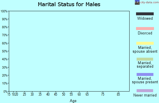 Zip code 25853 marital status for males
