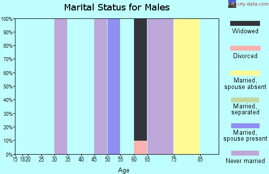 Zip code 25855 marital status for males