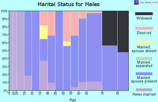 Zip code 25918 marital status for males