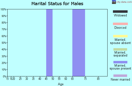 Zip code 25920 marital status for males