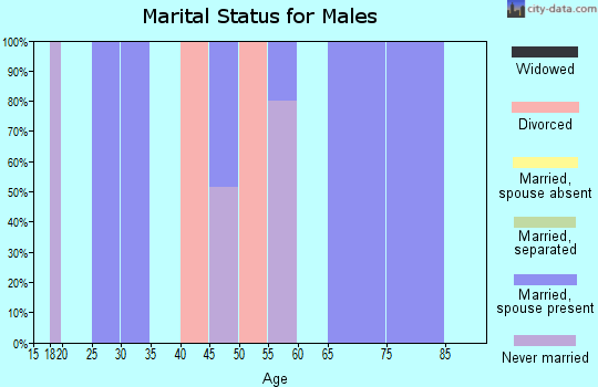 Zip code 25928 marital status for males
