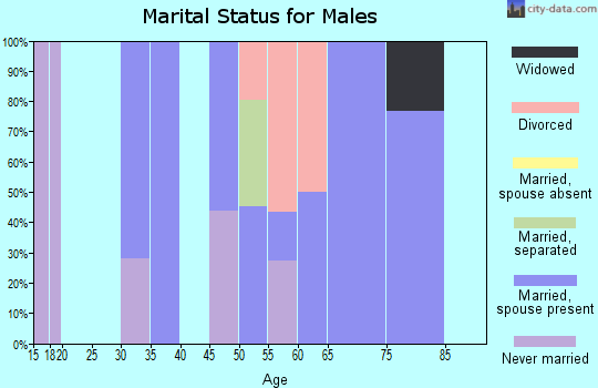 Zip code 25971 marital status for males