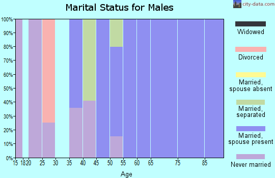 Zip code 25978 marital status for males