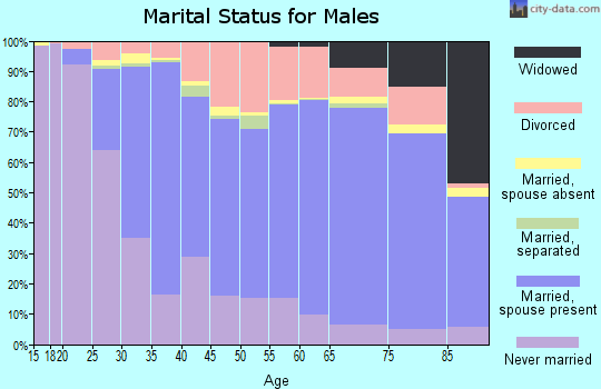 Zip code 26003 marital status for males