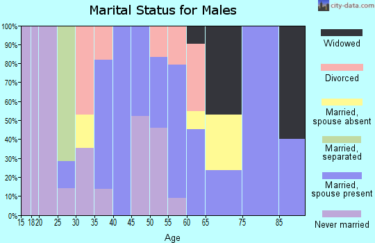 Zip code 26030 marital status for males