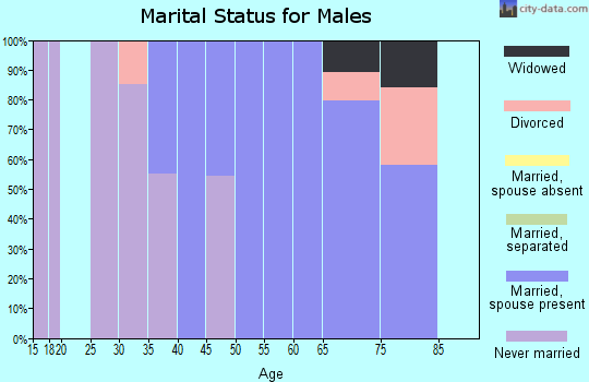 Zip code 26133 marital status for males