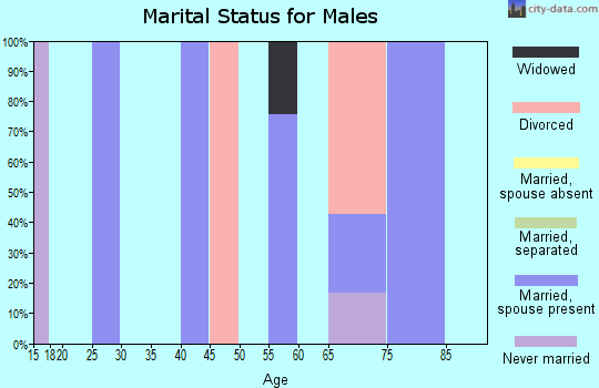 Zip code 26178 marital status for males