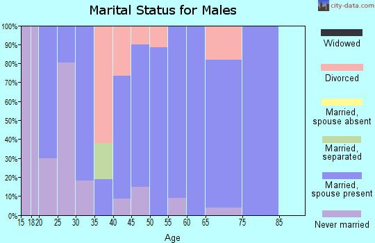 Zip code 26205 marital status for males