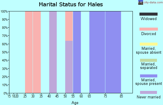 Zip code 26224 marital status for males