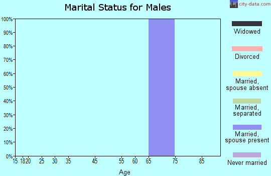 Zip code 26302 marital status for males