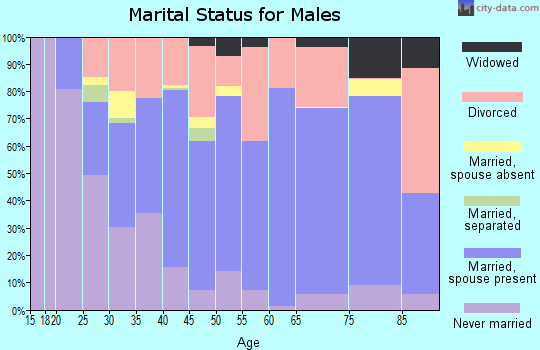 Zip code 26354 marital status for males