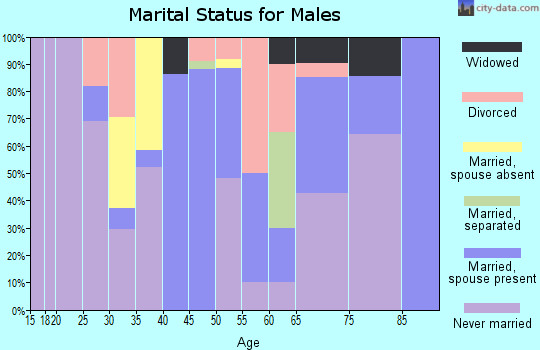 Zip code 26750 marital status for males