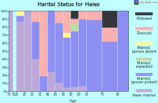Zip code 27019 marital status for males