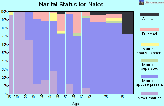 Zip code 27023 marital status for males