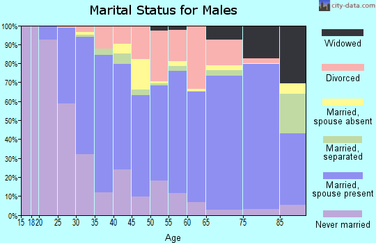 Zip code 27127 marital status for males