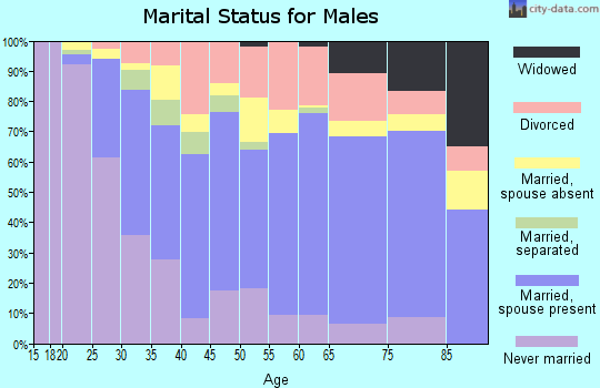 Zip code 27203 marital status for males