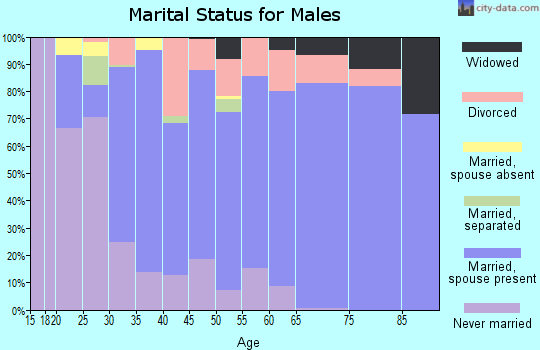 Zip code 27249 marital status for males
