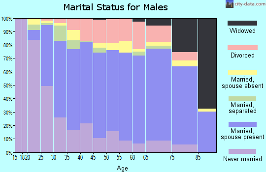 Zip code 27253 marital status for males