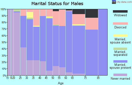 Zip code 27501 marital status for males