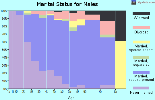 Zip code 27513 marital status for males