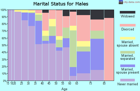 Zip code 27601 marital status for males