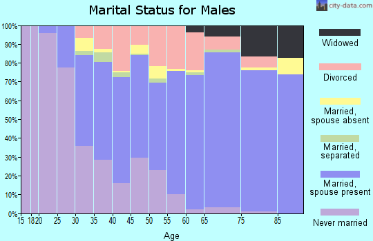Zip code 27609 marital status for males
