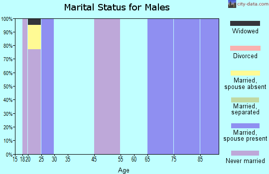 Zip code 27706 marital status for males