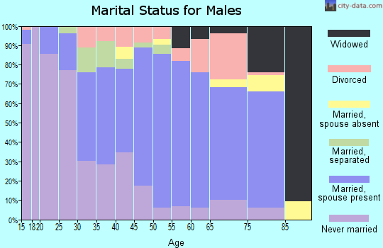 Zip code 27803 marital status for males