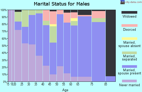 Zip code 27822 marital status for males