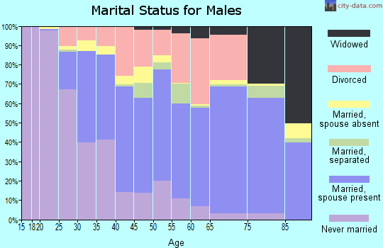 Zip code 27856 marital status for males