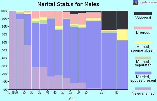 Zip code 28025 marital status for males