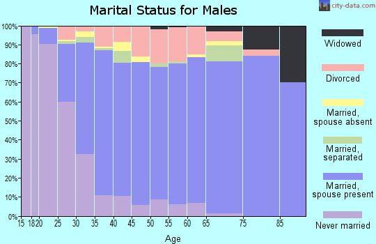 Zip code 28027 marital status for males