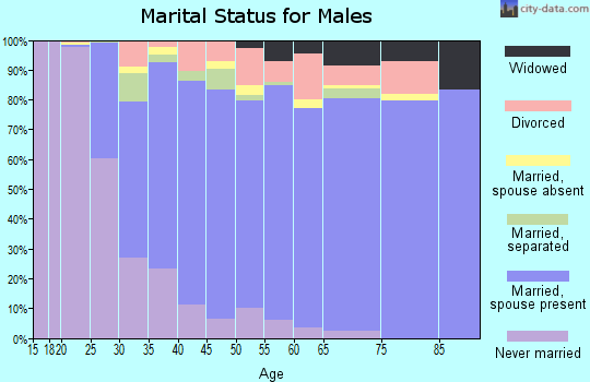 Zip code 28056 marital status for males
