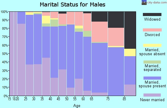 Zip code 28083 marital status for males