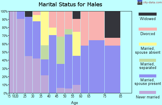 Zip code 28098 marital status for males