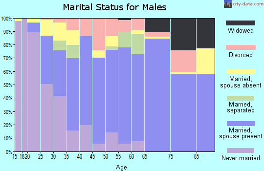 Zip code 28112 marital status for males