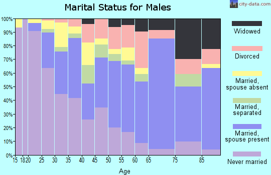 Zip code 28212 marital status for males