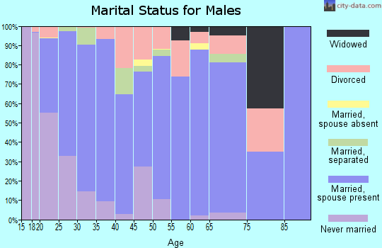 Zip code 28326 marital status for males