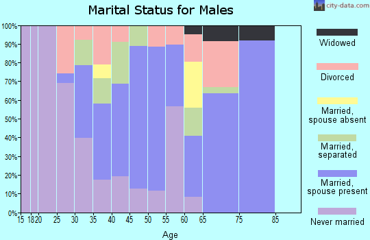 Zip code 28395 marital status for males