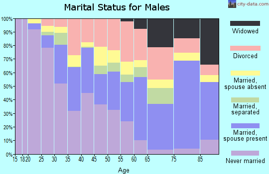 Zip code 28401 marital status for males