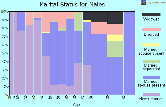 Zip code 28433 marital status for males