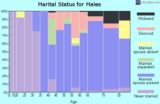 Zip code 28467 marital status for males