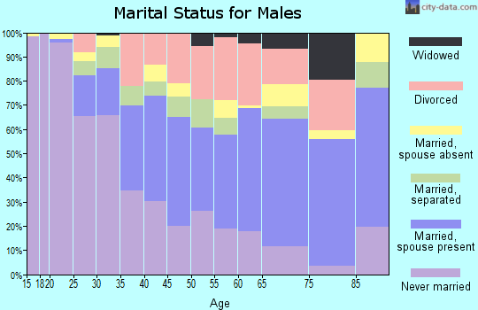 Zip code 28501 marital status for males