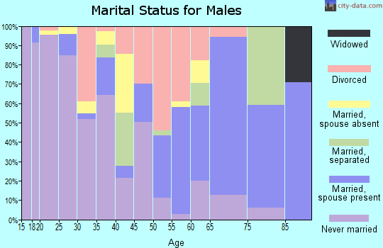 Zip code 28515 marital status for males