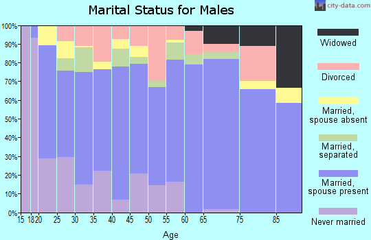 Zip code 28532 marital status for males