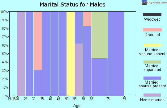 Zip code 28631 marital status for males